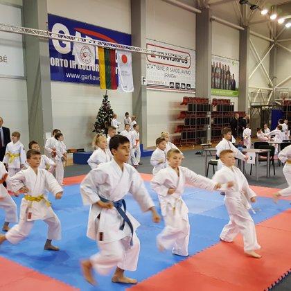 Kalėdinis Karatė turnyras Garliavoje